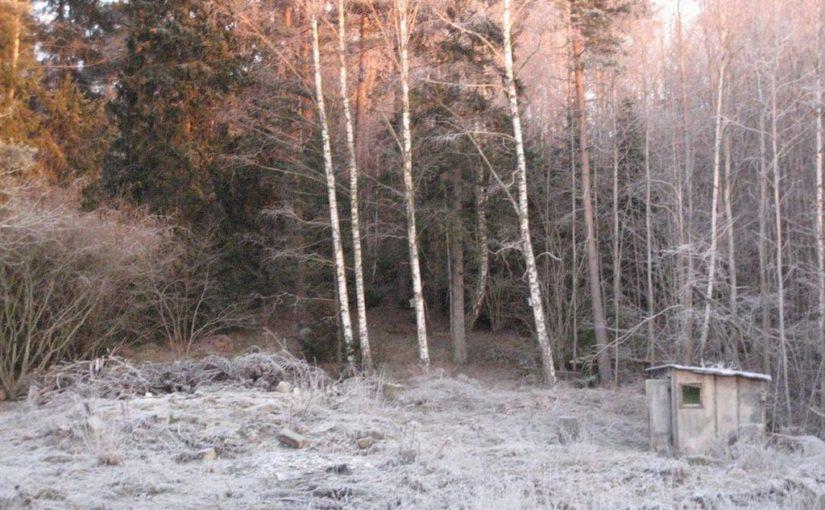 December frost in Sweden.